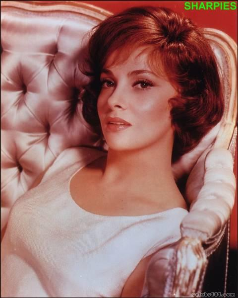 gina lollobrigida photo 9
