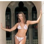 karen mcdougal photo 12