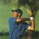 tiger woods photo 2