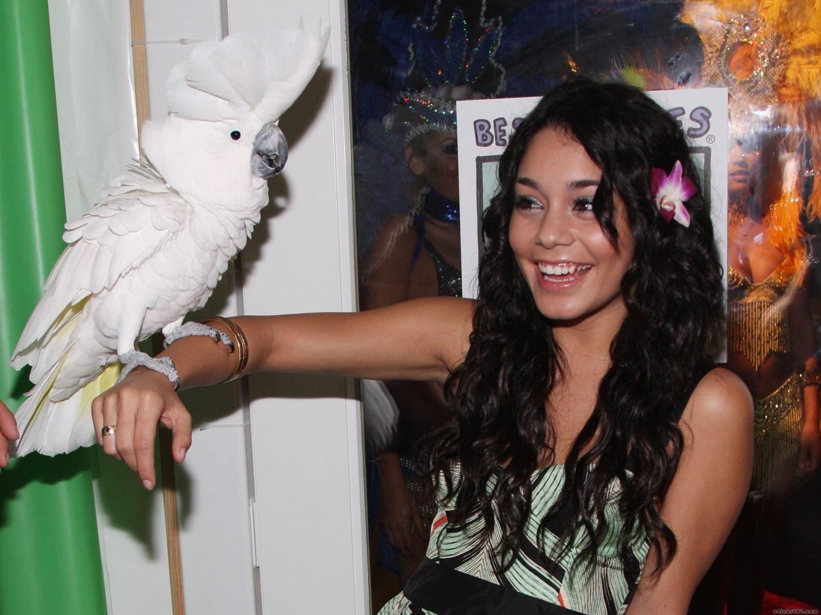 Vanessa Anne Hudgens Wallpaper ... evewhat Disturbed to various gay villiersuser Heaven+club+in+london