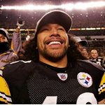 Troy Polamalu Picture