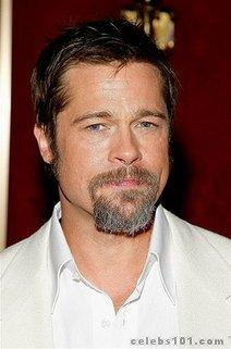 Brad Pitt visits urban renewal project in Spain